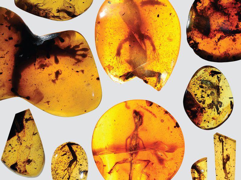 Đá Hổ Phách Amber là gì? Bạn biết gì về đá Hổ Phách Amber? 3